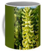 Canadian Milkvetch Wildflower Coffee Mug