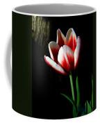 Candy Cane Tulip Coffee Mug