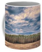 Cane Thicket Coffee Mug