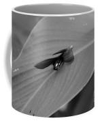 Canna In Black And White Coffee Mug