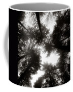 Canopy Coffee Mug