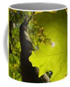 Canopy View Coffee Mug