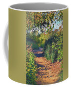 Canyon Path II Coffee Mug