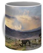 Canyon Road 2 Coffee Mug