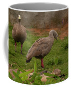 Cape Barren Geese Facing Right Coffee Mug