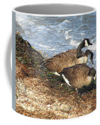 Cape Cod Beachcombers 1 Coffee Mug