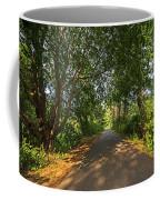 Cape Cod Rail Trail Trees Eastham Ma Coffee Mug