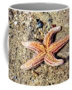 Cape May Starfish Coffee Mug