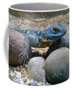 Cape Rock Lizard Coffee Mug