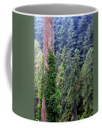 Capilano Canyon Ivy Coffee Mug by Will Borden