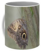 Captivating Photo Of A Brown Morpho Butterfly Coffee Mug