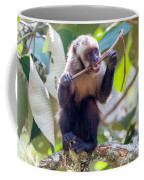 Capuchin Monkey Chewing On A Stick Coffee Mug