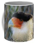 Caracara Bird Coffee Mug