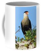 Caracara Portrait Coffee Mug