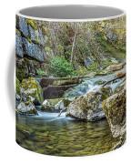 Caradocs Falls 1 Coffee Mug