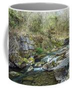 Caradocs Falls 2 Coffee Mug