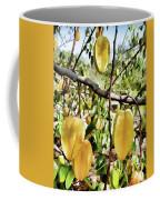 Carambola Fruit On The Tree Coffee Mug