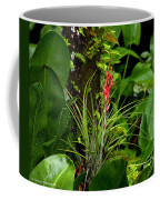 Cardinal Airplant Coffee Mug