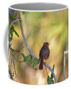 Cardinal  At Buschman Park Coffee Mug