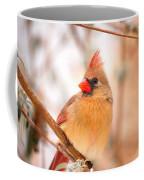 Cardinal Bird Female Coffee Mug