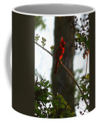 Cardinal In The Crepe Myrtle Coffee Mug