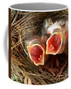 Cardinal Twins - Open Wide Coffee Mug