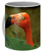 Caribbean Flamingo Coffee Mug