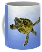 Caribbean Sea Turtle Coffee Mug