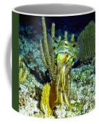 Caribbean Squid At Night - Alien Of The Deep Coffee Mug