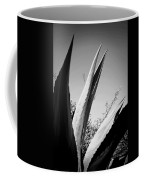 Carmel Mission Agave In B And W Coffee Mug