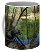 Carmel River At Gilmore Ranch Coffee Mug