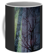 Carnegiewindowreflect Coffee Mug