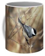 Carolina Chickadee - Birds At Bisset Park Coffee Mug