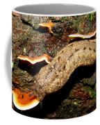 Carolina Mantle Slug Coffee Mug