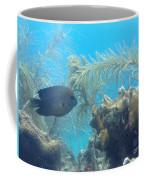 Carribean Sea Life Coffee Mug