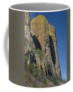 D17877-casa Grande Profile Coffee Mug