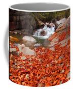 Cascade Brook Coffee Mug