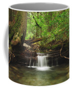 Cascade Happy Trail Coffee Mug