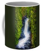 Cascade - Lower Falls Coffee Mug