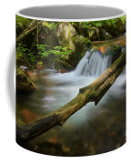 Cascade River Coffee Mug