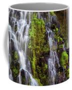Cascades Of Burney Falls Coffee Mug