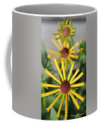 Cascading Coffee Mug