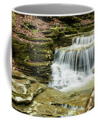 Cascading Into The Pool Coffee Mug