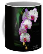 Cascading Orchid Beauties Coffee Mug
