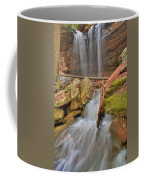 Cascading Waterfall Coffee Mug