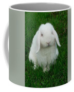 Casper Coffee Mug