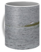Caspian Terns Coffee Mug