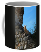 Castle Cat Coffee Mug
