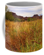 Castolon - A Ghost Town 3 Coffee Mug