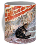 Cat Against Stone Coffee Mug